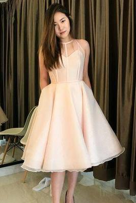 Elegant Tulle A Line Formal Prom Dress Homecoming Dress